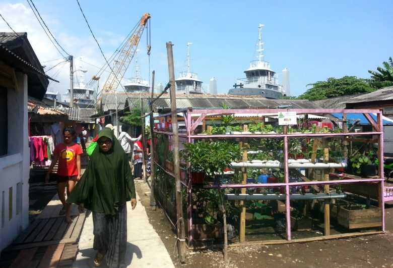 A community garden and learning centre in Marunda, near the harbour.