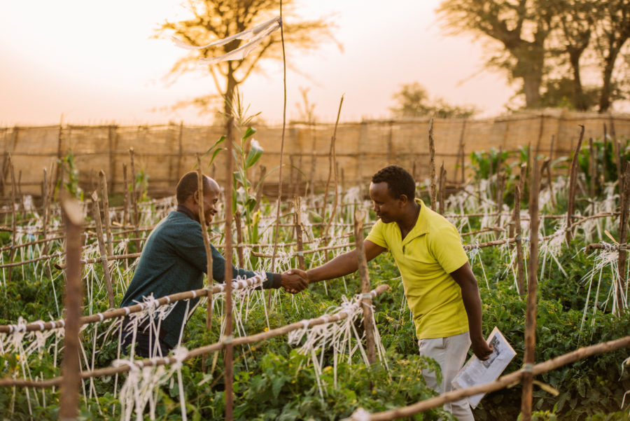 Access to finance for Ethiopian farmers