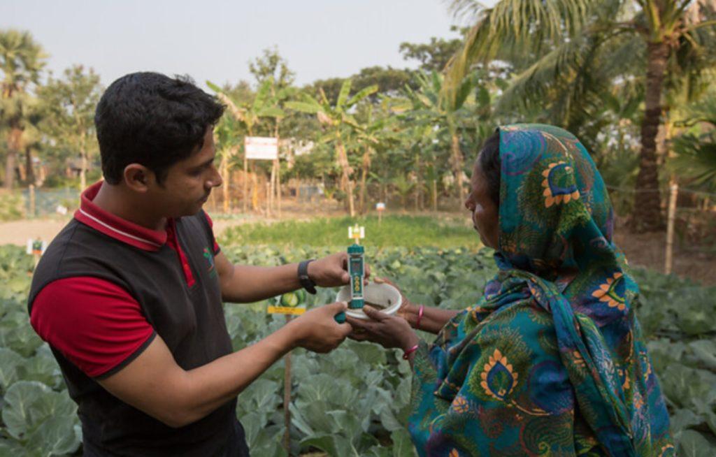 zouttolerante gewassen Bangladesh
